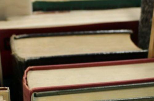 Article : Le livre résistera-t-il à la numérisation du monde ?