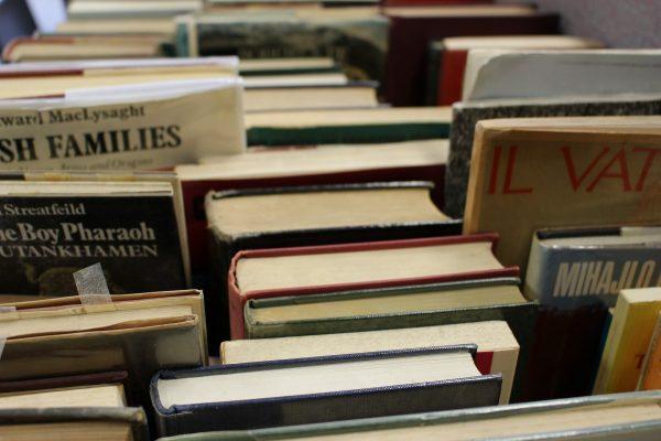livre-lecture-e-book-numerique-internet