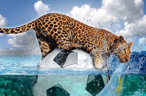 Article : Fête d'indépendance et miracle du 30 Juin : Les léopards offrent un spectacle faramineux à la CAN face au Zimbabwe